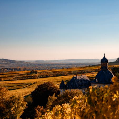Crémant de Bourgogne Cuvée Or Extra Brut Brut Nature