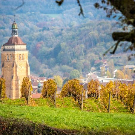 Bourgogne Puligny Montrachet  Le Trézin Blanc  2017 Domaine Moingeon André & Fils