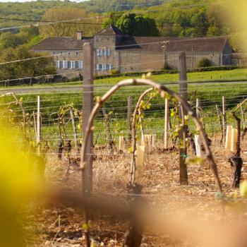 Crémant de Bourgogne Diamant