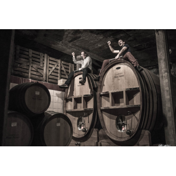AOP Corbières Tradition rouge 2015 vieilles vignes